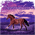 PRIZE: EquestrianLove by Bright-Button