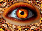 Autumn Witch Eye