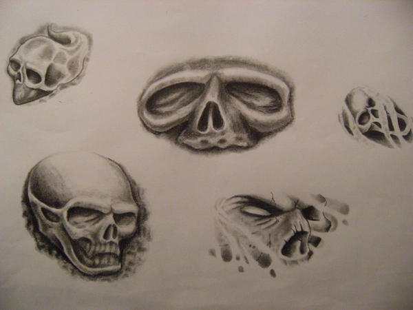 skulls by jfisher666