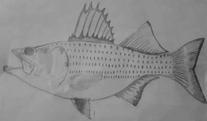 Striped Bass by LightningWolf272