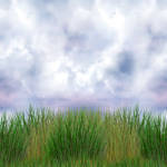 Grass_Sky Seamless Horizontal