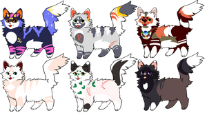 Feline batch- 5/6 adopts auction open