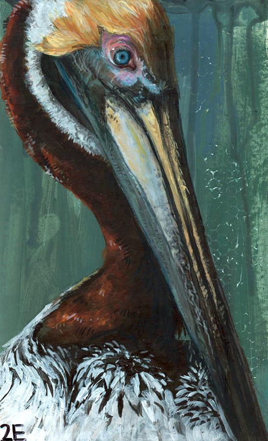 pelican by liz2e