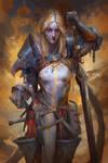 commander four sword of the blue mantle