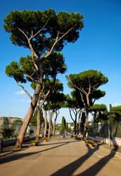 Viale del parco delle rose by MarcOnAcid