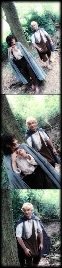 Where are you going Master? Sam/Frodo Cosplay