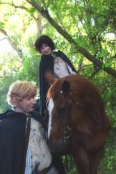 Mr Frodo, Sam and Bill the Pony Lotr Cosplay
