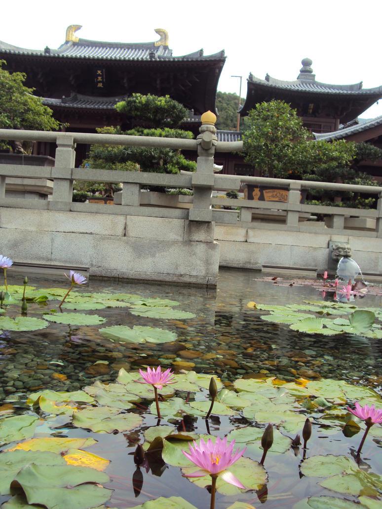 Water Flowers by AuraArgentum