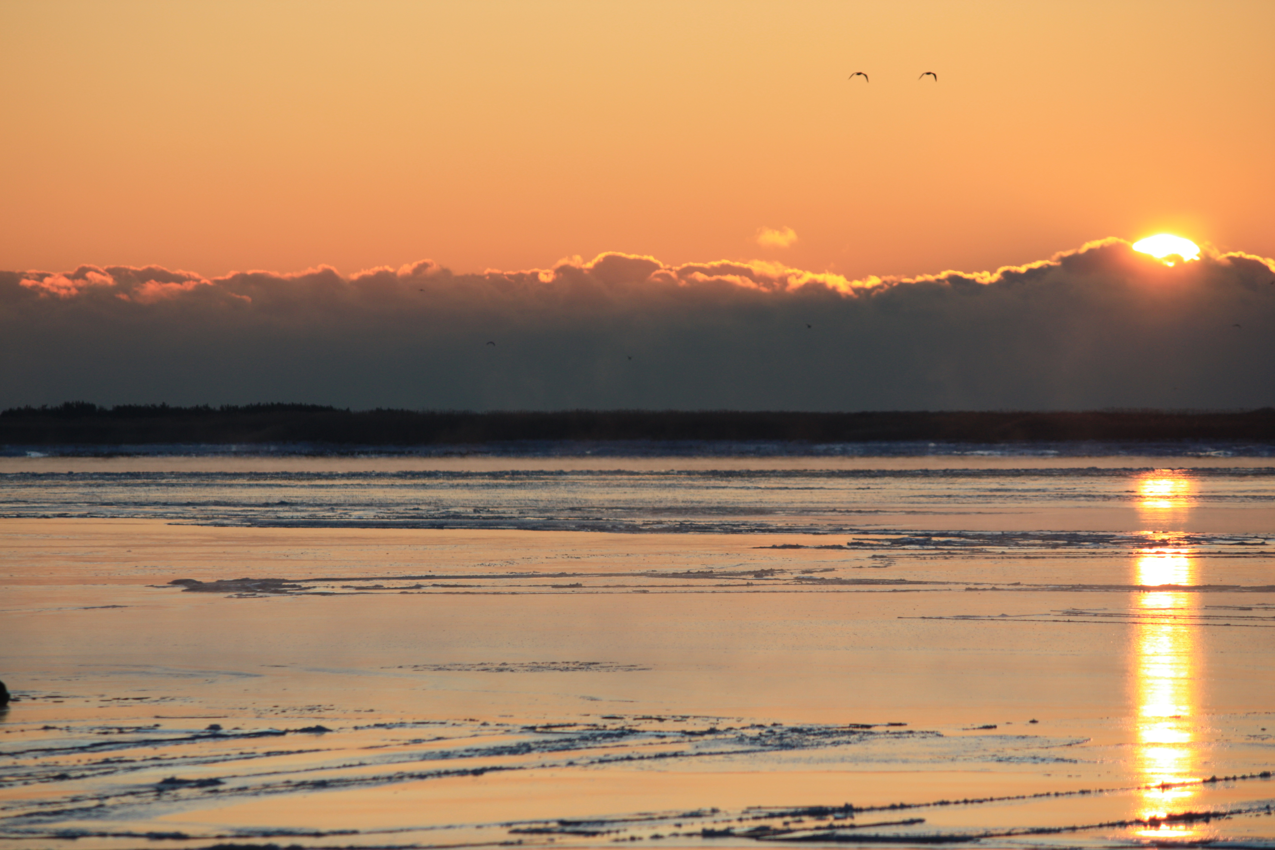 Cold Sunrise by ingui