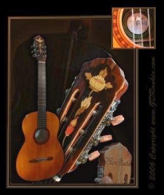 1975 DiGiorgio Classico Guitar by GD-litenin