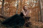 ..:Autumn wood:..