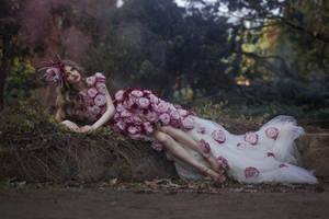roses by Avine