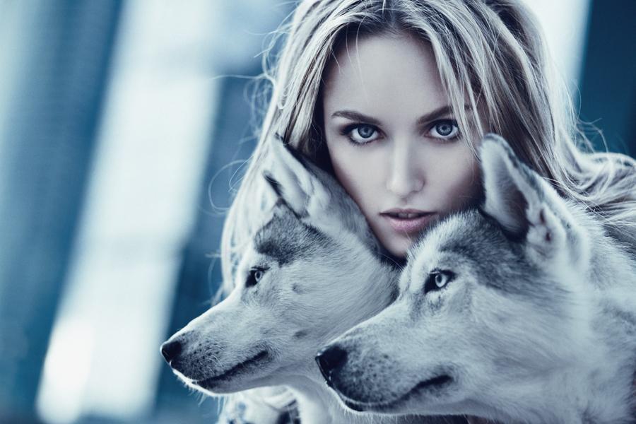 wolf by Avine