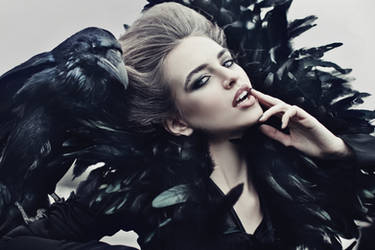 Raven by Avine