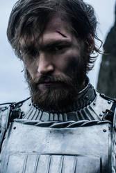 Knight II by Avine