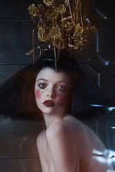 Aura by Avine