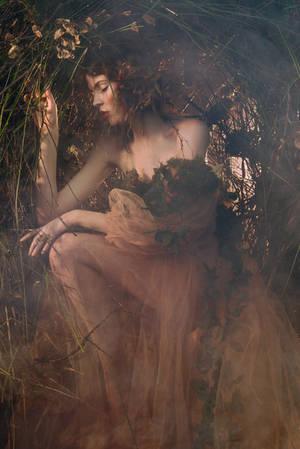 nest by Avine