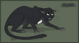 Warrior Cats - RavenPaw