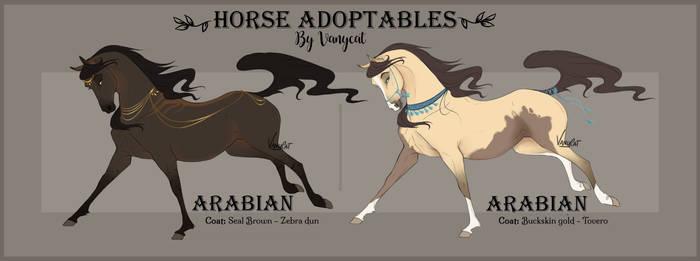 Adopt Arabian horses - Auction [OPEN]