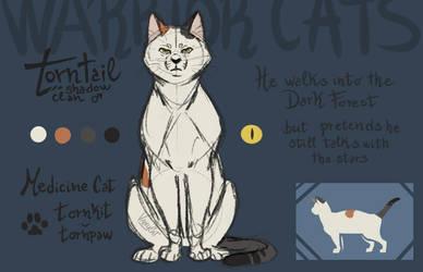 Torntail - Warrior Cat Oc by VanyCat
