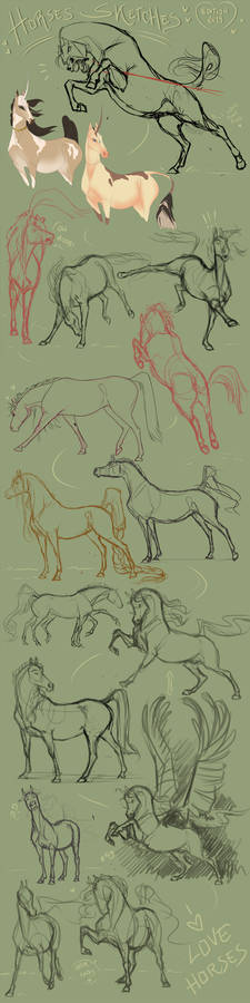 Sketches Horse 2019