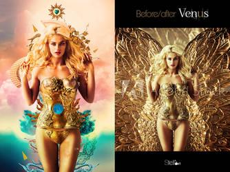 Before after Venus