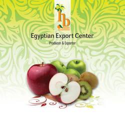 export import company flyer