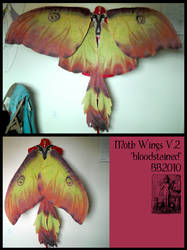 Moth wings version 2