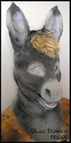 Silao Donkey