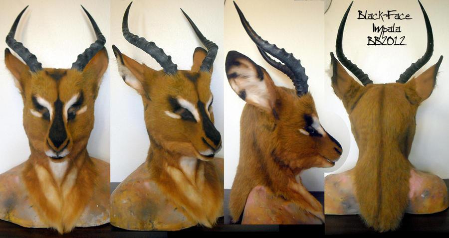 BlackFace Impala Head by Magpieb0nes
