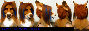 Hazy Dingo Head Turnaround