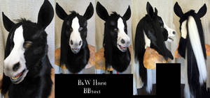 B and W Horse Head by Magpieb0nes