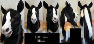 B and W Horse Head