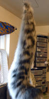 Snow Leopard Tail by Magpieb0nes