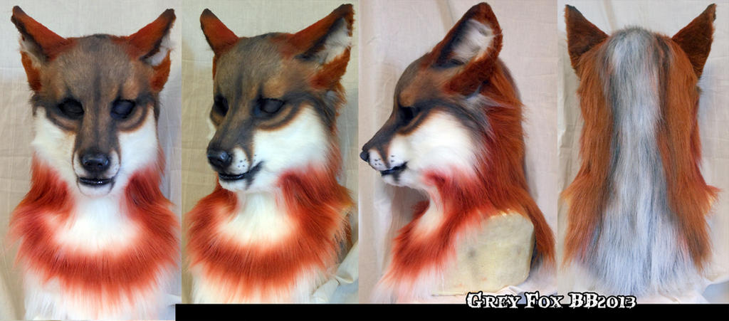 Grey Fox by Magpieb0nes
