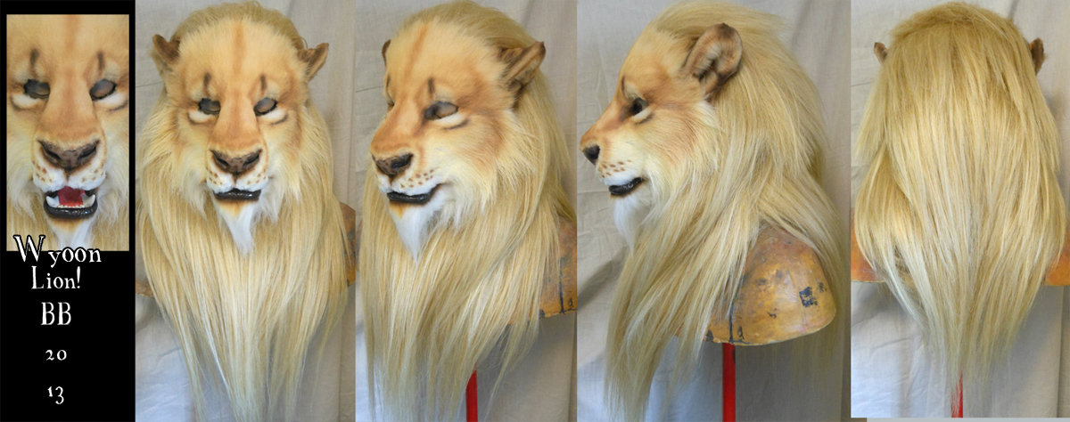 Wyoon Lion by Magpieb0nes