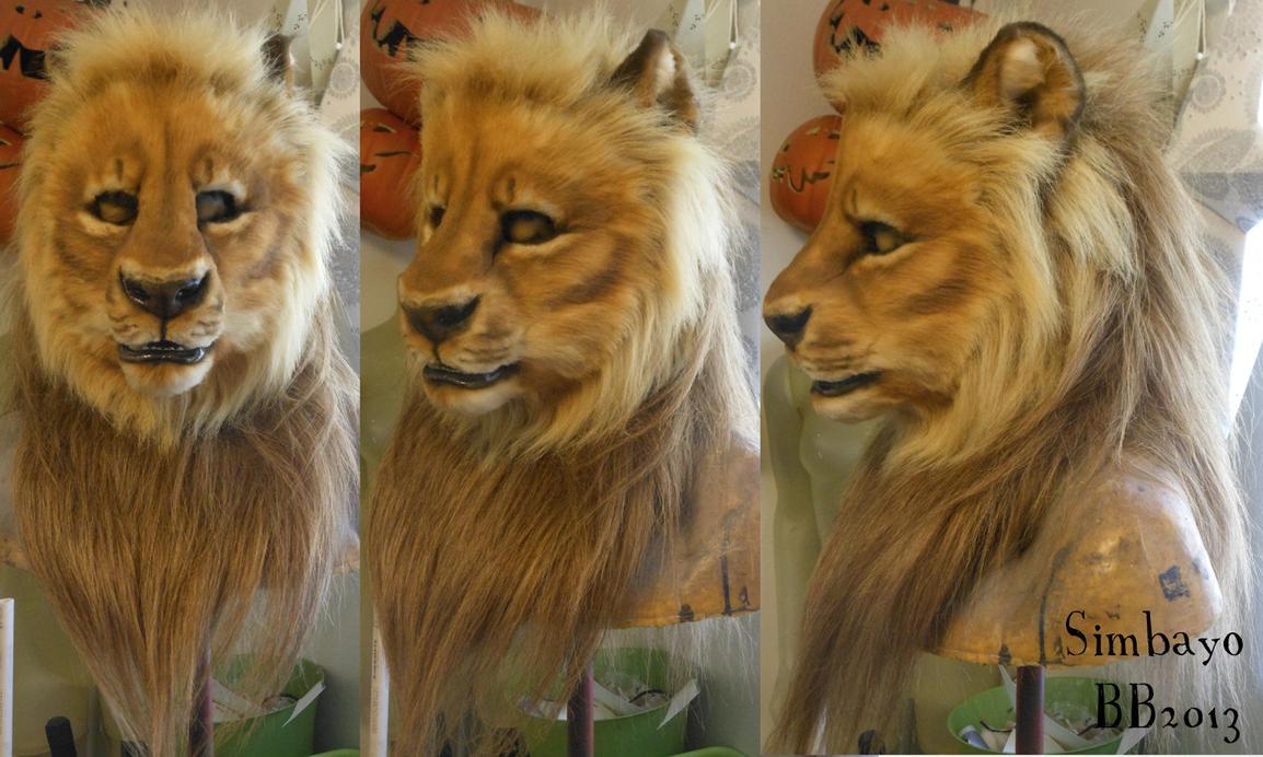 Symbayo Lion Head by Magpieb0nes