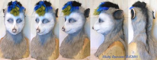 Shady Opossum!