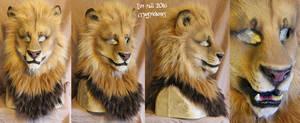 Nov 2016 Lion