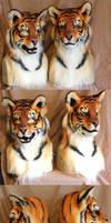 Tigers x2