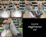 Coyote Head and Tail -NEW FEATURES!