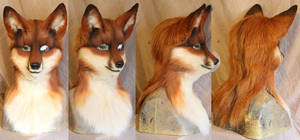 Red Fox- NEW shell