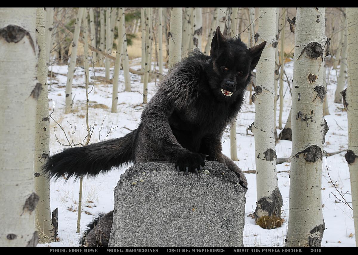 Werewolf: Graveyard shoot 003