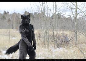 Werewolf: Graveyard shoot 006 by Magpieb0nes