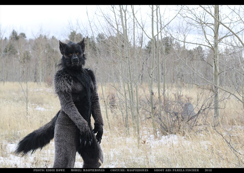Werewolf: Graveyard shoot 006