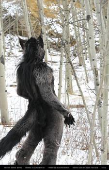 Werewolf: Graveyard shoot 010