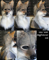 Grey Wolf by Magpieb0nes