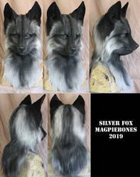 Silver Fox by Magpieb0nes