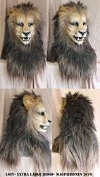 Lion- Extra long hood