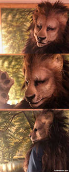 Lion (Modeled)